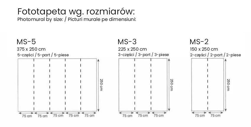 fototapeta wg. wymiarów
